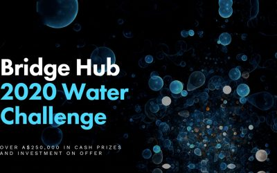 Bridge Hub 2020 Water Challenge Winners